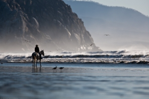 Lone female Equestrian in contemplation and awe of the power of nature at waterÕs edge by Morro Rock, on Morro Strand State Beach in north Morro Bay, CA, at a minus one foot low tide with miles of wide wet hard sandy beach, just before sunset on Tuesday 04 Jan 2011.   Photo © 2011 ÒMikeÓ Michael L. Baird, mike {at] mikebaird d o t com, flickr.bairdphotos.com, Canon 1D Mark III, Canon 300mm f/2.8 with with Canon EF 1.4X II Extender Telephoto Accessory, No circular polarizer, small Gitzo tripod, RAW. To use this photo, see access, attribution, and commenting recommendations at http://www.flickr.com/people/mikebaird/#credit - Please add comments/notes/tags to add to or correct information, identification, etc.  Please, no comments or invites with badges, images, multiple invites, award levels, flashing icons, or award/post rules.   Critique invited.
