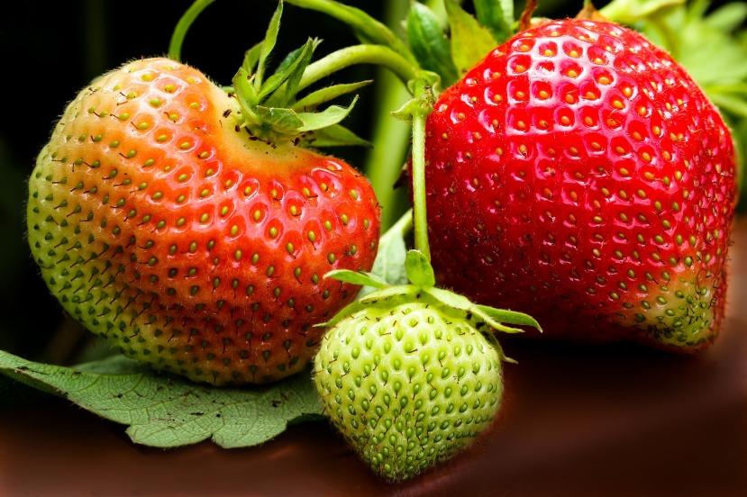 strawberry-1459569_1920