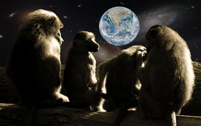 planet-of-the-apes-679911_640.jpg