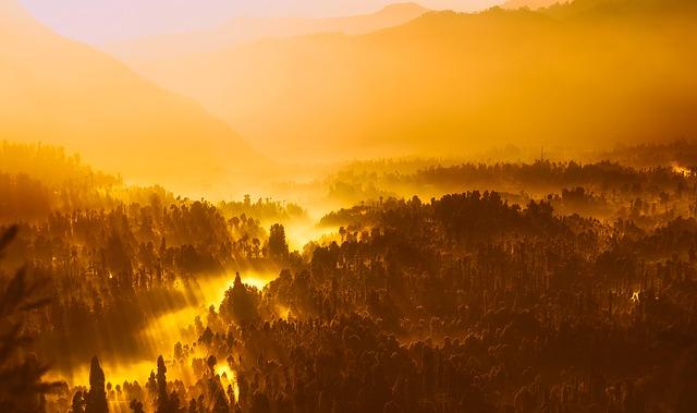 sunrise-1950873_640.jpg