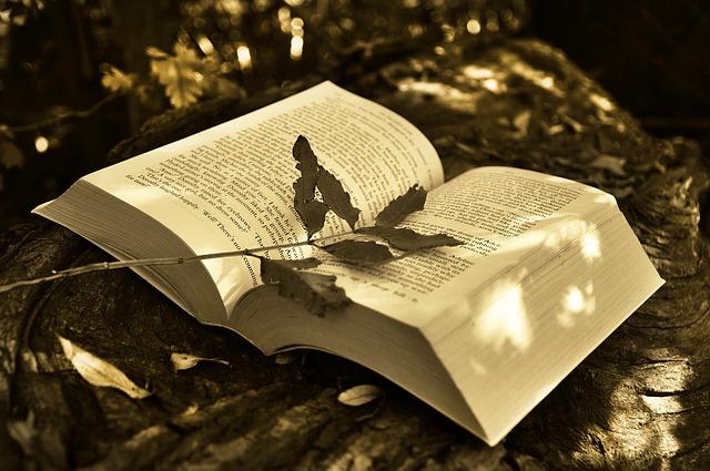 book-2855857_640.jpg