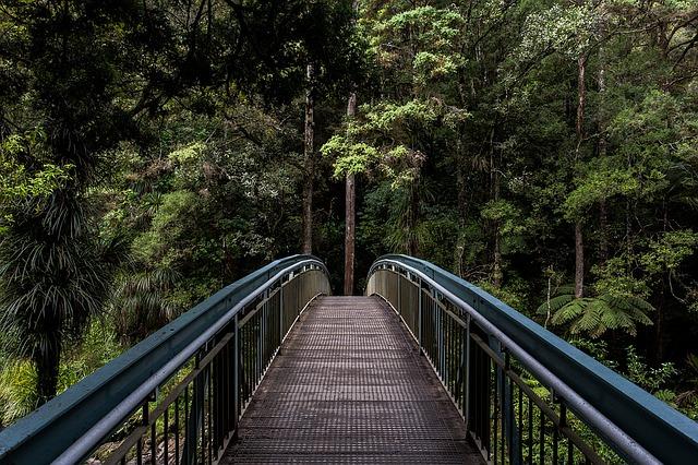 bridge-1082117_640.jpg