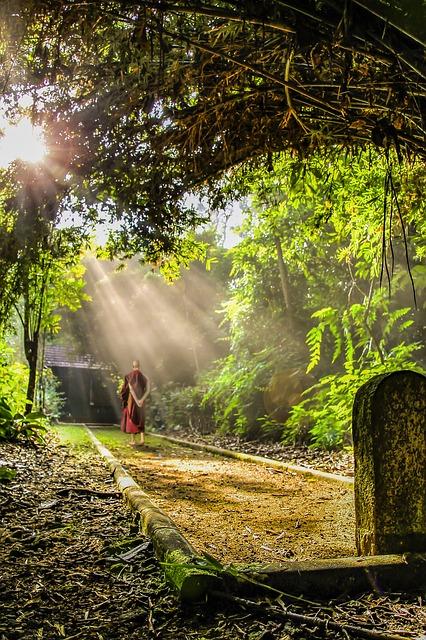 theravada-buddhism-1905532_640.jpg