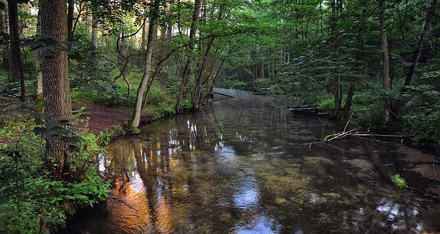 river-2637194_640.jpg