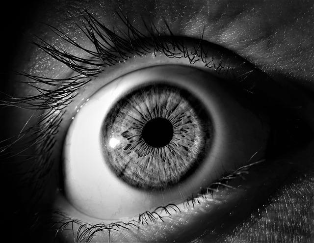 eye-3221498_640.jpg