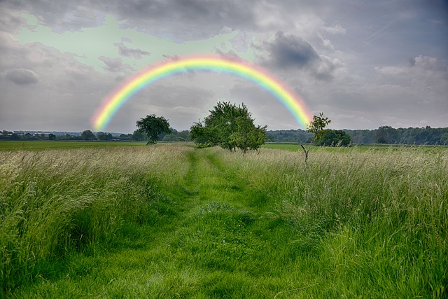 rainbow-3130585_640.jpg
