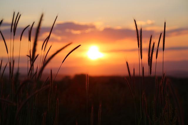 sunset-3416768_640.jpg